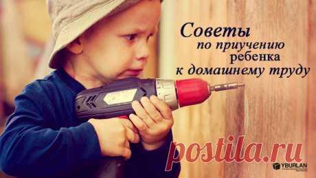 Все будет комильфо... - Советы по приучению ребенка к домашнему труду