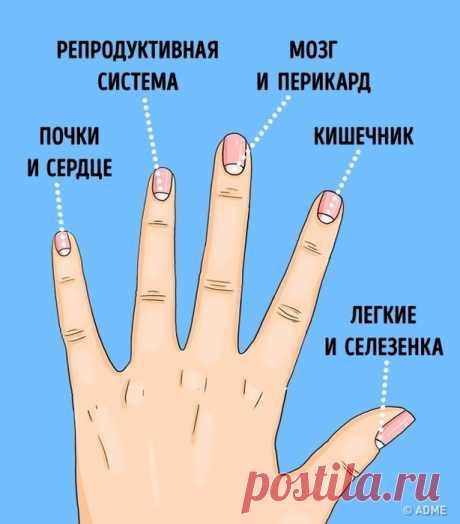 Лунки на ногтях предупреждают о болезни