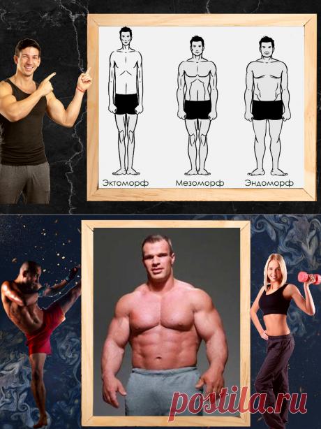 3 основных типа телосложения и как они влияют на тренировочный процес.