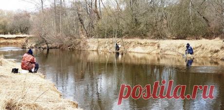 Особенности весенней ловли на малой реке