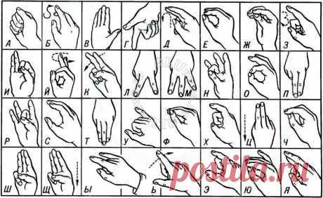 Как язык жестов подводит нас: 11 самых опасных ошибок Узнайте, что делает вас неуверенным в глазах других