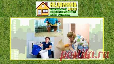 Сосед затопил квартиру и отказался оплатить ущерб. Суд помог решить ситуацию | НедвижкаINFO | Яндекс Дзен
