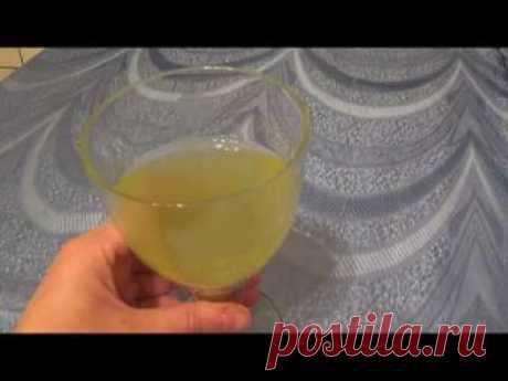Витаминный хвойно-лимонный настой защитит Вас от простуды