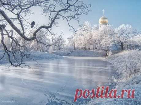 Царскосельский парк. Автор фото – Ольга Харкевич. Доброе морозное утро!