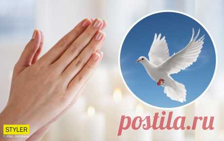 Эта сильная молитва на Благовещение Пресвятой Богородицы исполнит самые заветные желания Подробнее читайте на сайте