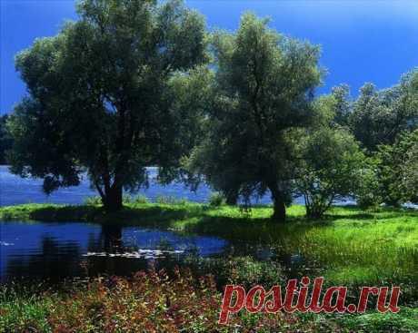 Красивая природа!