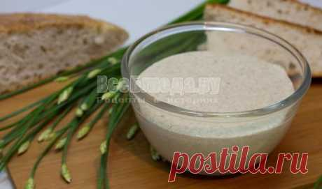 Eternal ferment for bread and pastries without yeast | All Dishes
