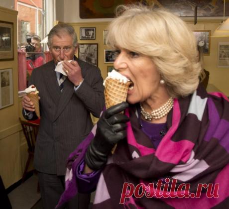 Забавная фотография члена королевской семьи, не правда ли?