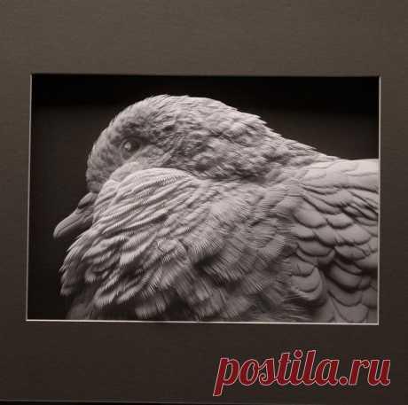 Бумажные скульптуры от Келвина Николлса / Я - суперпупер