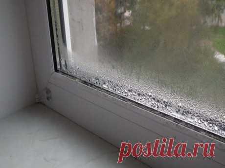 Вот как избавиться от конденсата на пластиковых окнах Конечно же, все мы прекрасно знаем, что металлопластиковые окна и двери гораздо лучше могут сохранять тепло в доме, чем деревянные. Так как деревянные могут пропускать холодный воздух через щели между самой рамой и стеклом, ровно как и само дерево превосходно пропускает воздух. Но любые деревянные р