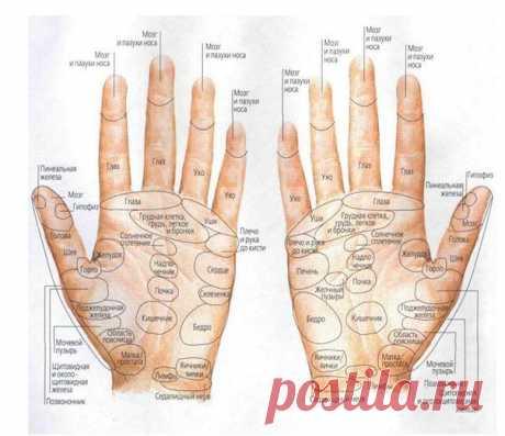 Японский пальцевый массаж по книге Тэ Санри