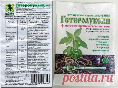 Гетероауксин: применение для растений, инструкция, действие