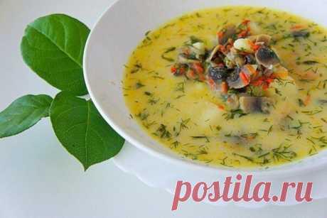 Ароматный, вкусный сливочный суп с грибами