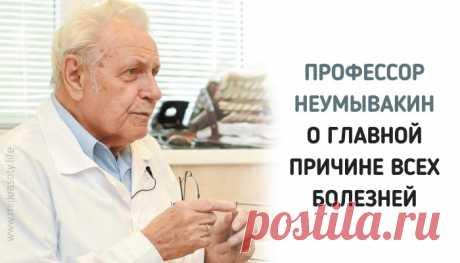 Профессор Неумывакин: «Я перестал пить чай и всем советую…» Очень полезное интервью. Прислушайтесь и будьте здоровы!