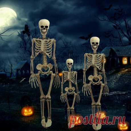38cm/90cm halloween prop skeleton skeleton skull hand lifelike human body poseable anatomy model party festival decoration Sale - Banggood.com