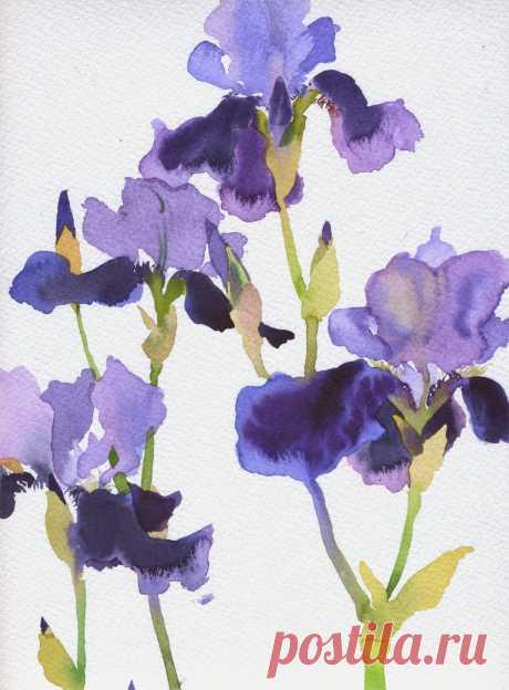Mary Woodin: цветы