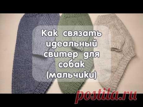 Как связать спицами свитер для собак (мальчики), Обзор