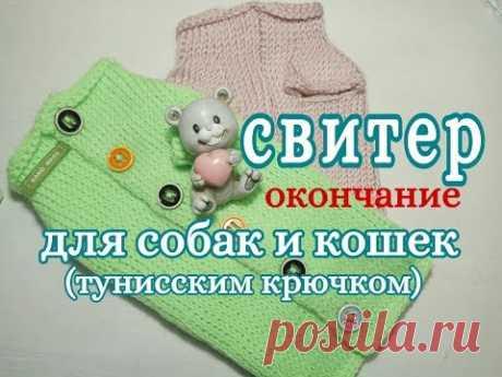 Свитер для собаки и кошки тунисским крючком, Окончание, for dogs tunisian crochet