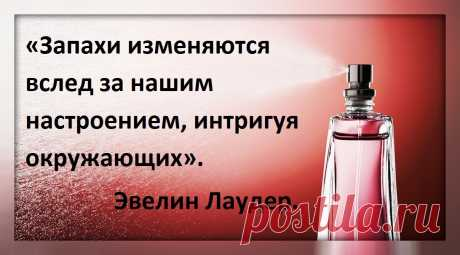 Самые нежные и утонченные пудровые ароматы с дорогим звучанием и шикарным шлейфом . | Самый парфюмерный канал. | Яндекс Дзен