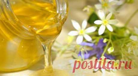 Как хранить мед в домашних условиях - где, как, сколько