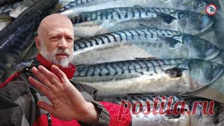 Задолбала скумбрия. Мой перечень самой вкусной покупной рыбы.
