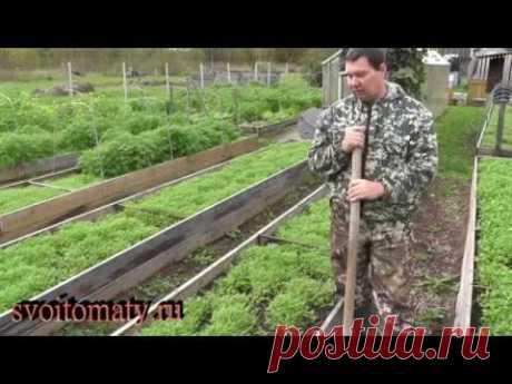 Подготовка грядок к осенним посевам