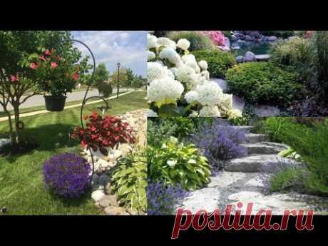 Как правильно украсить садовый участок