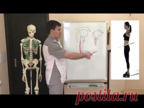Por qué no es posible extender los músculos (no han mirado este vídeo). La deformación del perol