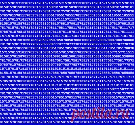 Вы не любите цифровые стереокартинки, но они очень полезны для глаз и мозга   На досуге   Яндекс Дзен