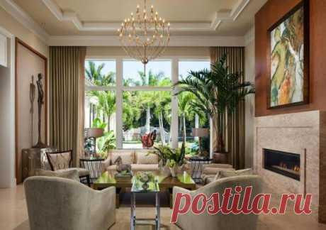 Комнатный цветок «пальма»: описание, особенности ухода и размножение
