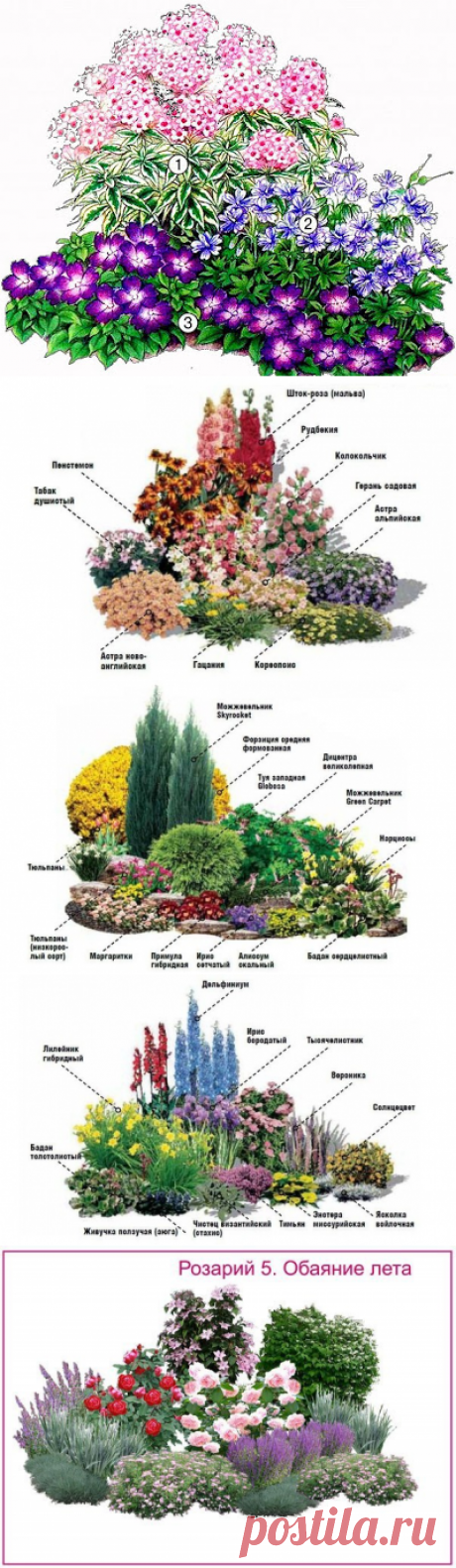 Как создать цветник непрерывного цветения...