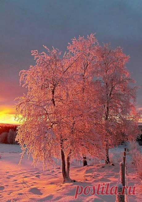 Красивые места, Восход и Закаты