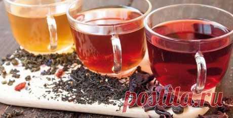 Какой чай эффективно повышает давление - виды и способы приготовления