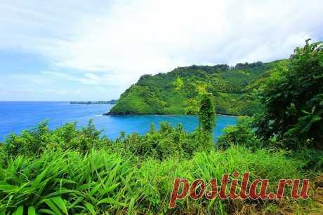 Потрясающие сады острова Мауи, Гавайский архипелаг - Путешествуем вместе