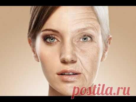 Процессы старения организма и как их остановить