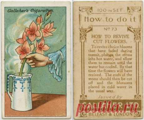 Эти 18 трюков очень древние, но какими же гениальными идеями люди обладали тогда! Вау!