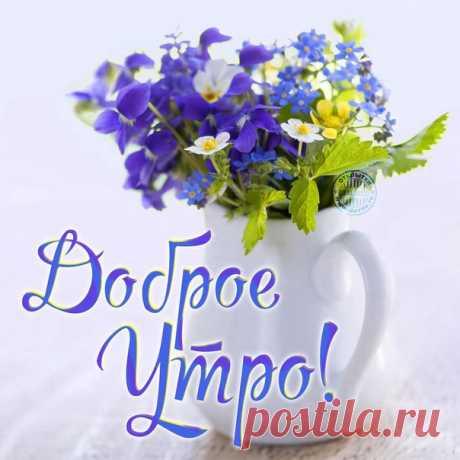 - Доброе утро! - скажешь кому-то. И будет ему очень доброе утро, И день будет добрый, и добрые встречи, И добрый, конечно, опустится вечер. Как важно и нужно, чтоб сразу с утра Тебе пожелали добра!