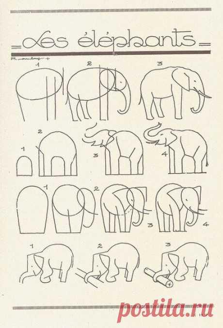 Учимся рисовать. Еще больше страничек из этой французской книжки вы можете увидеть на нашей доске https://www.pinterest.com/moreidey/art-lesson-inspiration