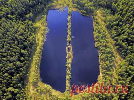 «Лёгкие планеты». Озеро Бучкино на территории Национального Парка «Угра» – результат добычи торфа в 50-х годах. Автор фото – Julia Abramova: