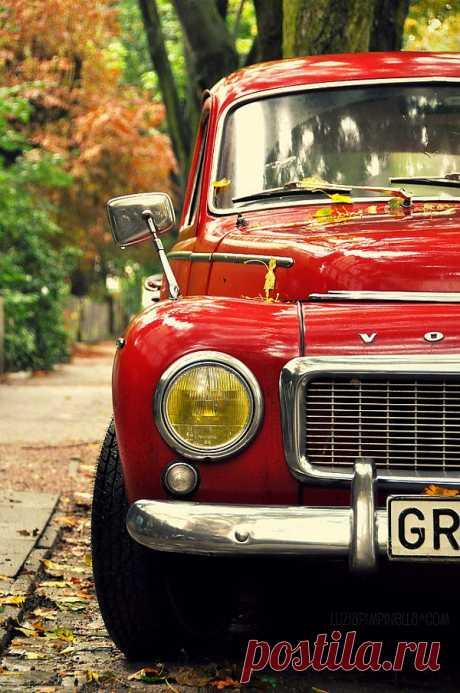Red Volvo.