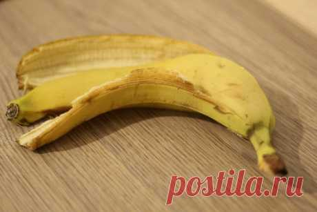 Почему умные хозяйки не выбрасывают банановую кожуру | TUT-NEWS.RU | Яндекс Дзен