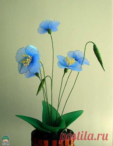 Цветы из капрона. Меконопсис и ИРИСЫ