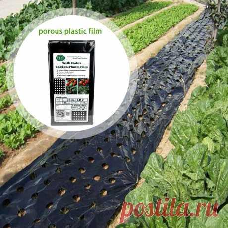 703.74руб. 20% СКИДКА|Pokich черная пленка для овощей, сельскохозяйственная пластиковая пленка, перфорированная полиэтиленовая пленка с 5 отверстиями, простая в использовании, 0,95*10 м|Сельскохозяйственные теплицы|   | АлиЭкспресс Покупай умнее, живи веселее! Aliexpress.com