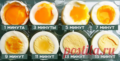 Яйца, омлеты, матушка Пуляр и другие