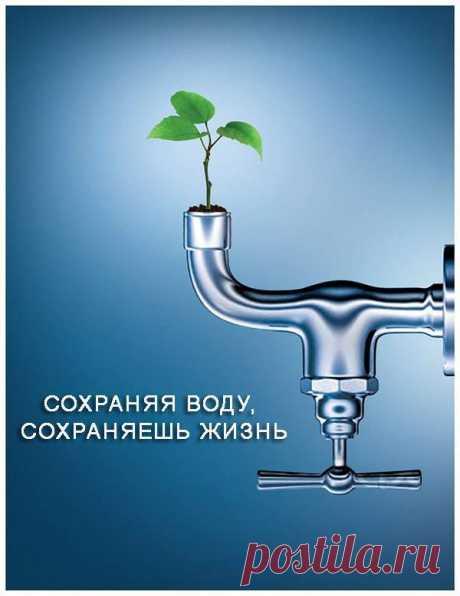 Запасы пресной воды на планете ограничены. От всей воды, которая есть на планете, пресная составляет всего около 2,5%! Из этого объёма доступной и пригодной для питья — ещё меньше. А ведь вовсе не сложно выключить воду в то время, когда вы намыливаетесь, принимая душ. Также можно экономить воду, используя экономичные душевые головки с расходом менее 10 л/минуту. И специальные насадки на кран, уменьшающие расход воды.  Не пропустите ЭКО советы от Гринпис Росси! Подпишитесь на наши новости: