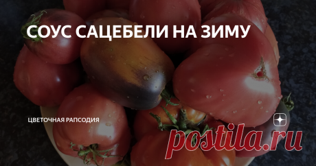 СОУС САЦЕБЕЛИ НА ЗИМУ Всем ПРИВЕТ, дорогие Друзья, подписчики и гости канала! В продолжении темы битвы с урожаем наших любимых томатиков🍅, хочу  представить Вам рецепт соуса Сацебели на зиму. Предыдущий рецепт томатной пасты на зиму здесь. Итак, ингридиенты для вкуснейшего Сацебели: -зрелые (перезрелые)томаты 3 кг; -два острых перчика; -100 гр. чеснока; -специи: уцхо сунели - 1ч. л., хмели сунели - 1 ч. л., молотый кориандр - 2 ч. л., высушенный измельчённый укроп - 1 ч. ...