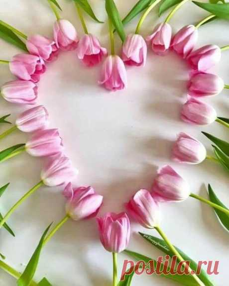 Какое счастье — просто Жить....)