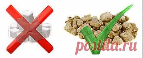 Лечебные свойства топинамбура - Все о Здоровье