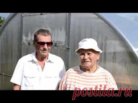 Теплицы из поликарбоната Ярославль по акции. 93 41 72 - YouTube