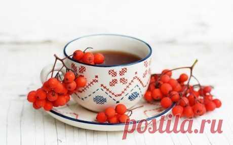 Витаминный чай с рябиной для кишечника, для почек и от гриппа — Полезные советы